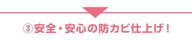 sp_20-03_10