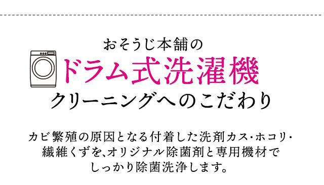 sp_2009hayawari_13