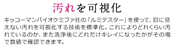 sp_2009hayawari_14re