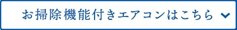 sp_2011oosouji_25