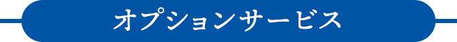 sp_2011oosouji_opt-bl