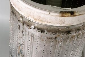洗濯槽のカビ除去